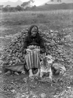 Maori Kuia and kuri (dog) Maori Tribe, Nz History, Polynesian People, Maori People, Maori Designs, New Zealand Art, Indigenous Tribes, Nz Art, Maori Art