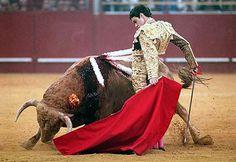 torero famoso jose tomas