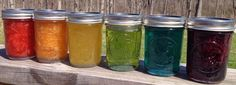 Canning Homemade!: A rainbow of recipes for Jams and Jellies!