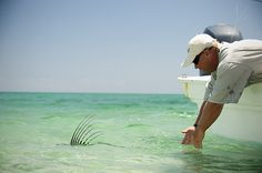 """Mexico–Baja California Sur: """"Fifty More Places To Fly Fish Before You Die"""""""