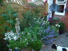 Small garden ideas