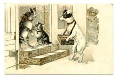 vintage-cat-postcard-cats-door-to-door-JRT-dog-cigarettes-match-seller