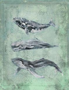 Introducing artist Anthony Morrow's Three Whales coastal art.