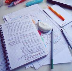 Study study and study