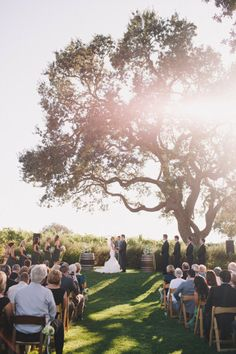 Gorgeous Ceremony Space...This is what I want a GIANT tree!!!!!! Just need to find one now ;)