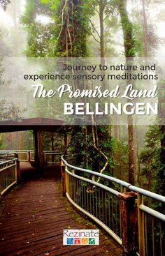 Healing Holidays Retreat in Byron Bay happening on March 2019 for Level 1 attendees. A powerful healing retreat journey where we explore the soul and understand the spirit, connect to nature and connect to the truest forms of healing. Horse Ranch, Spiritual Meditation, Promised Land, Byron Bay, Best Relationship, Spirituality, Healing, Journey, Explore