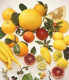 Citrice si coaja de citrice Fruit, Food, Essen, Meals, Yemek, Eten