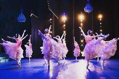 Boston Ballet's 'The Nutcracker' Piece Of Music, Ballet Beautiful, Nye, Boston, Concert, Instagram Posts, Inspiration, Job Description, Ballerinas