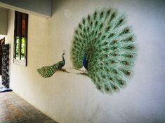 wall painting - This is very soothing nice wall nice color