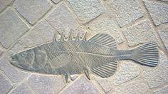 Bronze fish scultpure by artist Stephen Radmacher