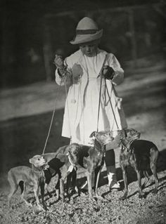 0ce358713bc8 Circa 1909 Igs at a Dog Show in Amsterdam hip hop instrumentals updated  daily…