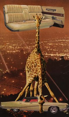 'Backseat' by Jheri Evans #CollageArt