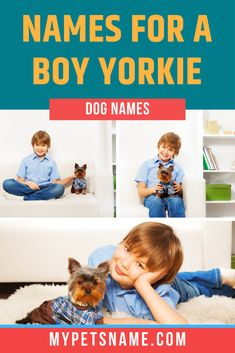 Are you considering getting a playful Yorkie and need some good ideas for names? Or are you already on your way home with an adorable little bundle wrapped Yorkie Names, Puppy Names, Yorkie Puppy, Male Pet Names, Pop Culture References, Companion Dog, Cool Names, Yorkshire Terrier, Puppies