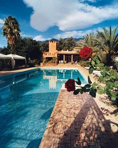 #Honeymoon Idea: An hour from Marrakech, La Roseraie resort has 40 rooms and 60 acres of gardens