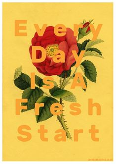 every day is a fresh start collage by laura redburn Be Gentle With Yourself, Healthy Living Quotes, Illustration Art, Collage Illustrations, 1 News, Speak The Truth, Fresh Start, New Work, Quotes To Live By