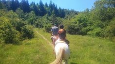 Sull'Alpe,verso il Prato dell'Uomo Gobbo Couple Photos, Couples, Portion Plate, Couple Shots, Couple Photography, Couple, Couple Pictures