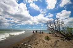 point pelee national park ON National Parks, Beach, Water, Photography, Outdoor, Gripe Water, Outdoors, The Beach, Outdoor Games