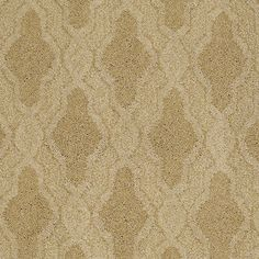 Carpeting In The Caress Collection Style Stylish Art Color Camel By Shaw Floors