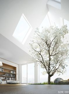 Loft space with skylights by Alpha Idea | I too would like a full grown tree in my living room.