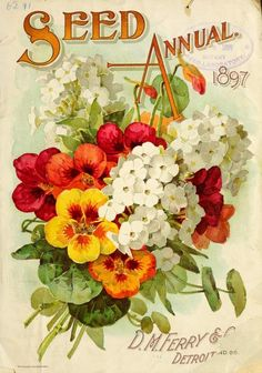 Ferry's Seed Annual Catalog (1897). D.M. Ferry & Co. Detroit, Mich.