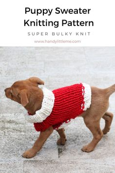 Make a Christmas dog sweater with this free knitting pattern. The sweater is the right size for a puppy or small sized dog. Knitting Machine Patterns, Christmas Knitting Patterns, Sweater Knitting Patterns, Knitting For Kids, Free Knitting, Knitting Projects, Christmas Puppy, Christmas Crafts, Dog Sweater Pattern
