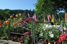 bed frame flower garden | Repurpose and Recycle Anything Under the Sun