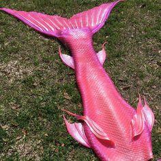 Mertailor Mermaid Tails By Eric Ducharme: Pretty in pink by Mertailor… H2o Mermaid Tails, Pink Mermaid Tail, Realistic Mermaid Tails, Mermaid Boy, Fin Fun Mermaid, Mermaid Tails For Kids, Silicone Mermaid Tails, Mermaid Tale, Mermaid Poems