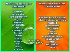 Alimenti che accelerano il metabolismo Healthy Juices, Healthy Drinks, Healthy Tips, Healthy Food, Wellness Fitness, Health And Wellness, Health Fitness, 3 Day Detox, Juice Plus