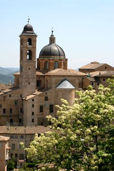 The Palazzo Ducale in Urbino, Italy, houses the National Gallery of the Marches