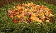 Terra de Minas - Prato inspirado na Espanha, 'paella capira' ganha sotaque e ingredientes mineiros | globo.tv
