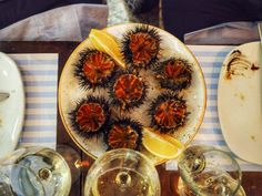 Sea urchins in Barcelona