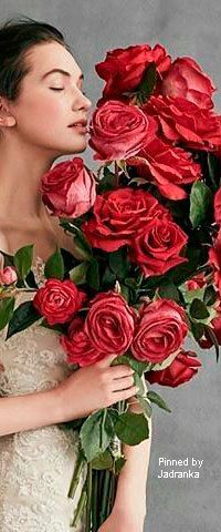 Jadranka & Beautiful world My Flower, Flower Power, Every Rose, Beautiful World, Beautiful Flowers, Colorful Flowers, Lady, Red Roses, Floral Wreath