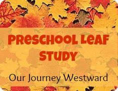 Preschool Leaf Study - what excellent ideas for nature study with the littles!