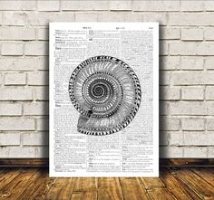 Cool marine print. Nautical art. Lovely seashell poster. Nice beach house decor for home and office. SIZES: A4 (8.3 x 11) and A3 (11.6 x 16.3)  BUY