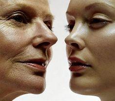 Il #GanodermaLucidum contro l'#invecchiamento può esercitare un'azione ritardante molto efficace