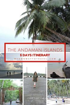 The Andaman Islands 5 Days Itinerary - The Andaman and Nicobar Islands are in East India andPort Blairis the capital. The captivated beauty of Andaman attracts many tourists every year. This destination is best for adventure travel and must-visit for all nature lovers. Here are the details of my #solotrip to the #AndamanIslands to help you to plan your trip to this dream destination. #theandamanislands #india #travelindia #travel #itinerary