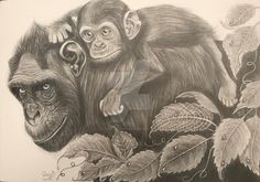 Jungle by on DeviantArt Monkey Drawing, Deviantart, Drawings, Painting, Animals, Hyperrealism, Monkey, Realistic Drawings, Graphite