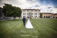 Video - Imago Wedding
