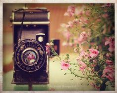 camara de foto vintage - Buscar con Google
