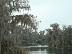 LAKEFRONT HOMES FOR SALE IN CLERMONT FL JANUARY 2015