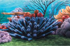 Penn Plax Finding Nemo Coral Reef 20 gal. Background - Add some serious color to any tank with the Penn Plax Coral Reef 20 gal. Background. This great background depicts the colorful reef from the Pixar fi...