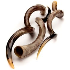Loose Polished Kudu Horns, Love these hope they died naturally!!