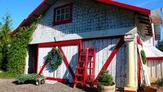 Grandma Buddy's Christmas Tree Farm Petaluma:  Located in Sebastopol. Hours: Open from the day after Thanksgiving through December 23, 9:00am – 5:30pm **If you go later in the day, the barn and train village are utterly magical at dusk.