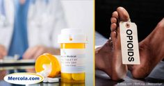 Prescription for Change  How to End Americas Opioid...