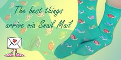 Silly Snails