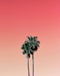 Colorful and Aesthetic Minimalist Photography by Aryton Page