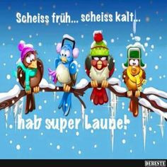 Pin by birgit crews on guten morgen , guten tag Maya, Christmas Bird, Funny Birds, Good Morning Good Night, Big Love, Just Smile, Man Humor, Einstein, Funny Quotes