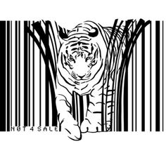 Tigers extinct in 12 years?by Sassan Filsoof