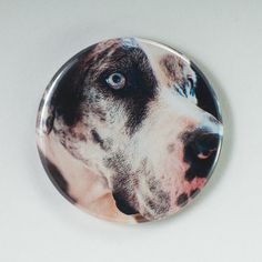 Harlequin Great Dane Photo - Choose Pocket Mirror - Magnet - Pin back button