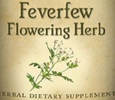 All Natural FEVERFEW FLOWERING HERB Liquid Tincture Fever Reducer Herbal Extract for Hot Head Headache Relief Traditional Dietary Supplement by NaturalHopeHerbals on Etsy